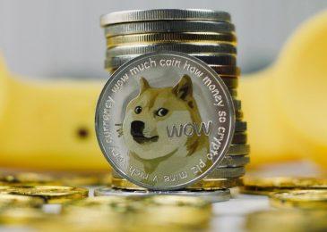 Giá 1 dogecoin = VNĐ 2021? Đồng Dogecoin là gì? Có tiềm năng không?