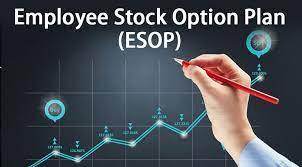 Cổ phiếu Esop là gì? Quy chế, cách tính, mua có được chia cổ tức không?