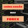 Forex và chứng khoán khác nhau như thế nào? Nên đầu tư cái nào?